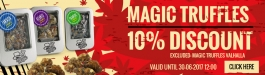 Offer Magic Truffles